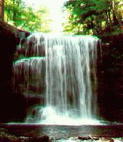 rickett falls